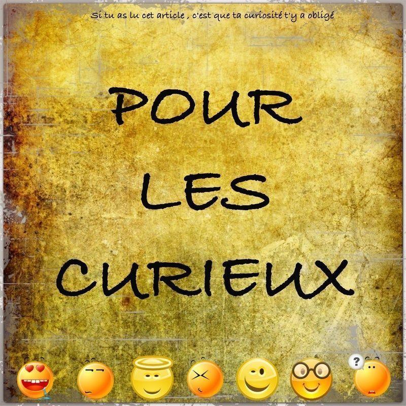 La curiosite 2 - Bisounours tout curieux ...